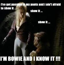 David Bowie Labyrinth Meme - 202 best labyrinth confessions and memes images on pinterest