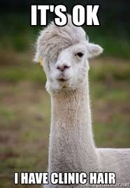 it s ok i have clinic hair emo alpaca meme generator