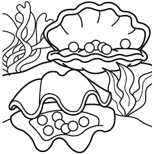 shells coloring page coloring pages ideas