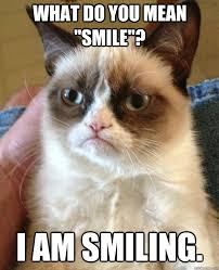 Smiling Cat Meme - what do you mean smile cat meme cat planet cat planet