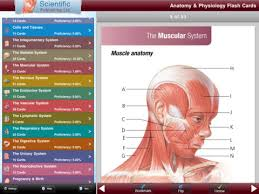 Anatomy And Physiology Study Tools Best Anatomy And Physiology Flash Cards At Best Way To Study