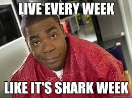 30 Rock Memes - 30 rock meme what a week meme best of the funny meme