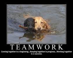 Teamwork Memes - motivational teamwork memes memes pics 2018