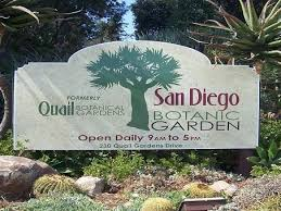 San Diego Botanical Gardens Encinitas San Diego Botanic Garden The Official Travel Resource For The