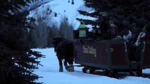 sun valley idaho sleigh ride to trail creek cabin youtube