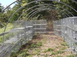 How To Build A Rabbit Hutch And Run Construct Wire Rabbit Cage Plans