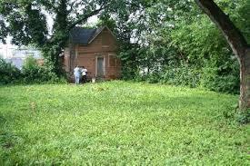 Small House Backyard Ovac Projects