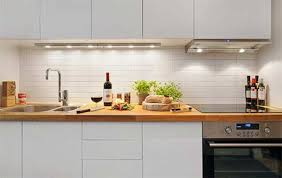 Fabulous Nuance Kitchen Futuristic L Shape Light Blue Painted Small Kitchen