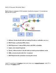 bio 97 homework 4 restriction enzymes 1 explain the following
