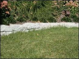charles dewar stone mason lexington ky garden accents