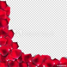 where can i buy petals abstract petals on transparent background realistic