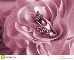 pink wedding rings wedding rings soft mood pink stock image image of material soft