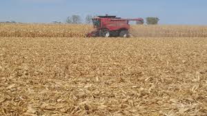 eastern iowa from the field crop report 10 28 2015 the field squires 2015 corn harvest