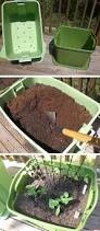 best 25 gardening hacks ideas on pinterest organic gardening