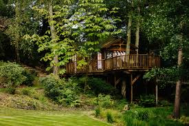 blue forest treehouses xo private