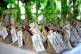 seed packets wedding favors top ten unique and wedding favors for guests bestbride101