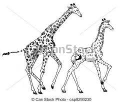stock illustration of running giraffe pen sketch of two giraffe