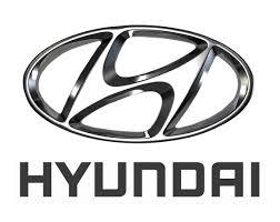 hyundai car touch up paint u0026 repair kit chipex