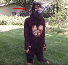 Bigfoot Halloween Costumes Bigfoot Evidence Halloween Bigfoot Costume Review