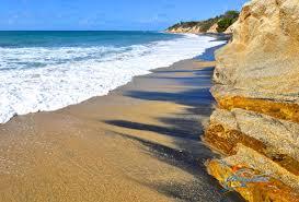 vieques playa negra negrita black sand beach puerto rico