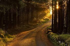 Seeking God Beautiful Awakening Seeking God Early