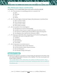 all grade worksheets transcription and translation worksheet
