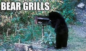 Funny Bear Memes - oh yes he does ha triple threat bbq beer music fest