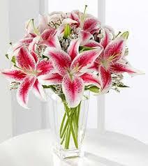 stargazer lilies deliver stargazer lilies carithers florist atlanta luxury