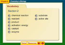 click on a lesson name to select chapter 6 chemistry in biology
