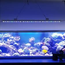 best lighting for corals 5pcs lot best sale 81w ip65 led aquarium light bar hard strip l