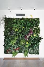 wall mounted herb garden livingroom vertical herb garden indoor living wall systems
