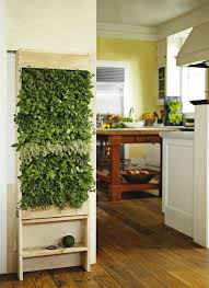 vertical indoor herb garden designed and created by grovert exclusively for williams sonoma