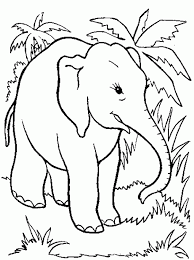 innovative coloring pages elephant inspiring 7639 unknown