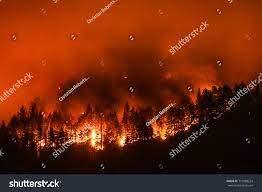 Wild Fire Columbia Gorge by Eagle Creek Wildfire Columbia River Gorge Stock Photo 710588224