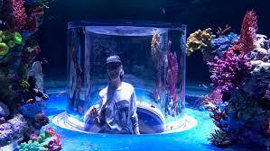 national aquarium set to make waves in jerusalem israel21c