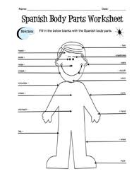spanish body parts label worksheet u0026 answer key by sunny side up