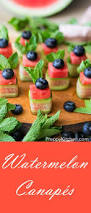 954 best nibbles for a crowd images on pinterest appetizer