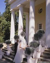 Topiaries Wedding - veiled topiaries martha stewart
