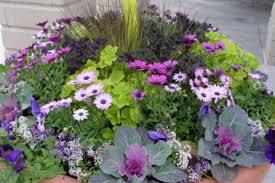 Flower Planter Ideas by 40 Commercial Flower Planter Ideas Design Ideas For Large