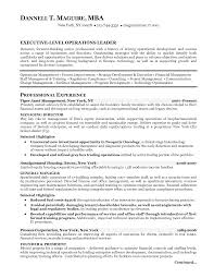Mba Resume Review Bboy Toshiki Vs Thesis Assistance With A Resume Great Gatsby Color