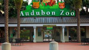 New Orleans Map Of Hotels by Hotels Near Audubon Zoo Sheraton New Orleans Hotel