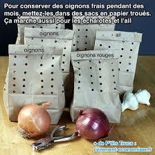 comment ranger ses recettes de cuisine l astuce incroyable pour conserver les oignons frais pendant des