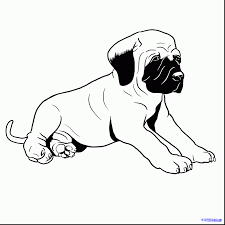 spectacular how to draw bull mastiff dog with pitbull coloring