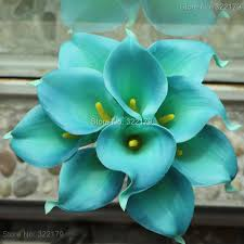 teal flowers 10pcs teal calla lilies wedding bouquet flowers calla for