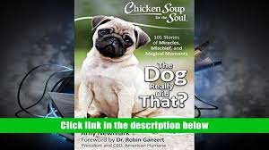 chicken soup for the soul the dog really did that 101 stories