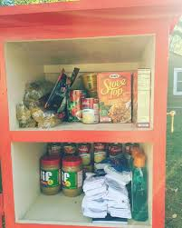 mom and son install neighborhood pantry box in their front yard