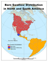 Hummingbird Migration Map Syrian Refugees In The United States Migrationpolicyorg Asian