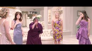 bridesmaid dress shops bridesmaids food poisoning own it now on dvd