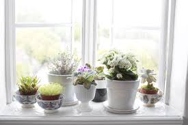 kitchen window sill decorating ideas