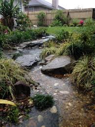 Designing A Bed The Rainforest Garden How To Design A Dry Creek Bed 10 Tips